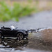 My car by PhotooKyle
