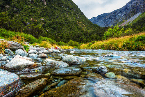 water stream river rocks bush trees mountains