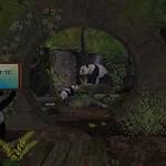 Panda Sanctuary @ Mysterious Paradise