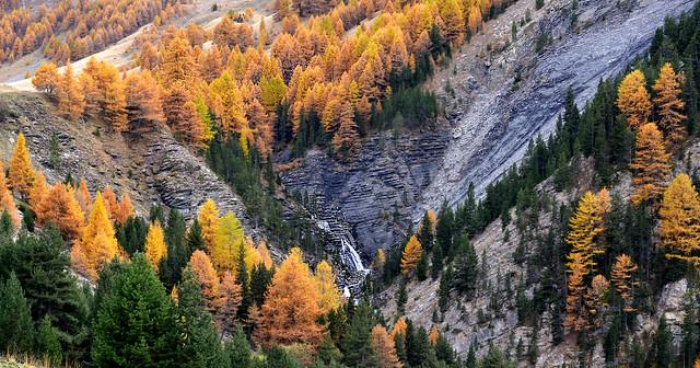 France - vallée de l'Ubaye -couleurs d'automne