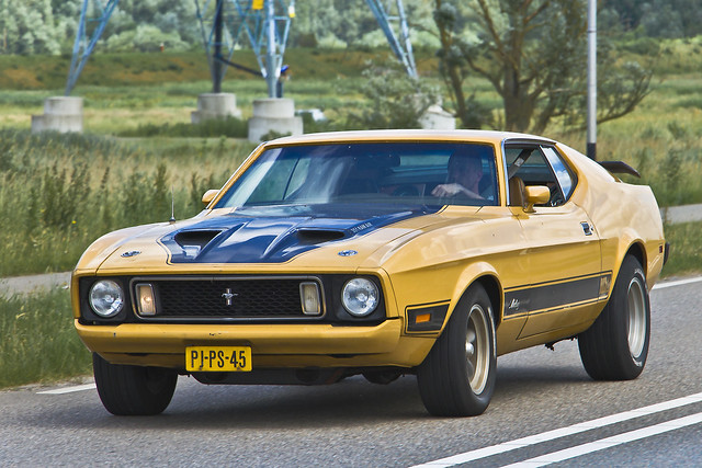 Ford Mustang Mach 1 1973 (3089)