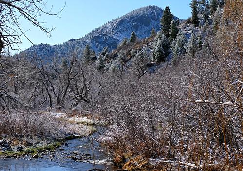 bearcreek idledale usa sandraleidholdt hiking snow spring springtime creek openspace lairothebear tree landscape forest foothill colorado