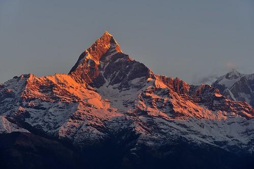 nepal nikon amanecer himalaya 70200 machapuchare d700