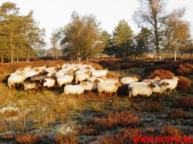 22-10-2011             Driebergen         26 km (23)