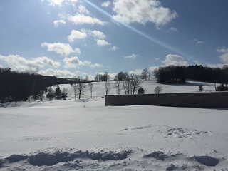 Clark Art Institute (February 2015) -29