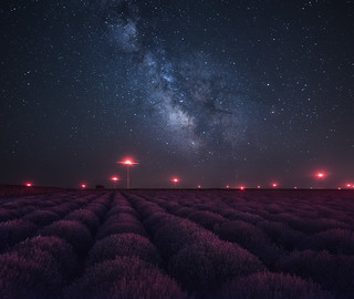 Milky way above lavender field in Bulgaria | by Krasi St Matarov