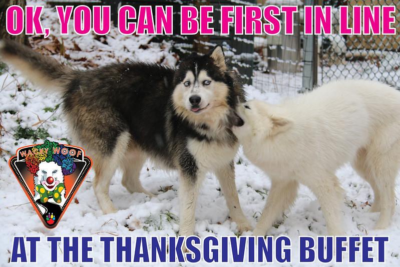 Thanksgiving Buffet Line