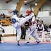 Taekwondo 2015