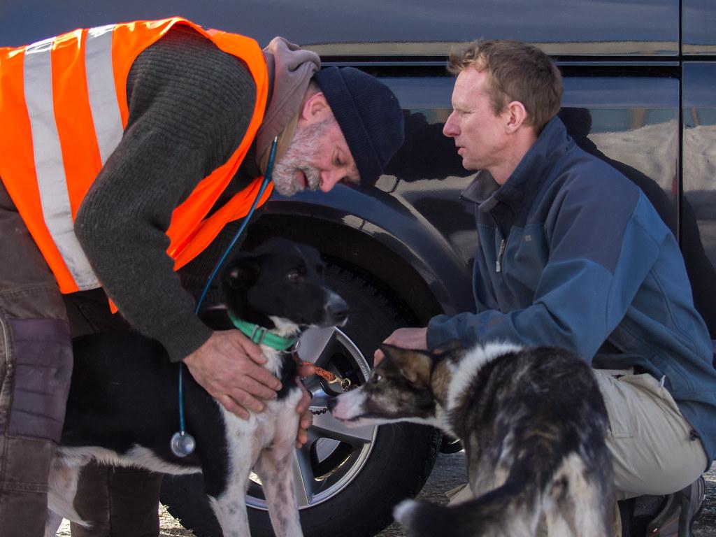 Amundsen race 2015 vet. check-23