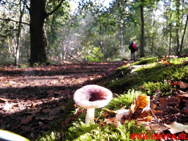 2011-10-15      Castricum 26 Km   (25)