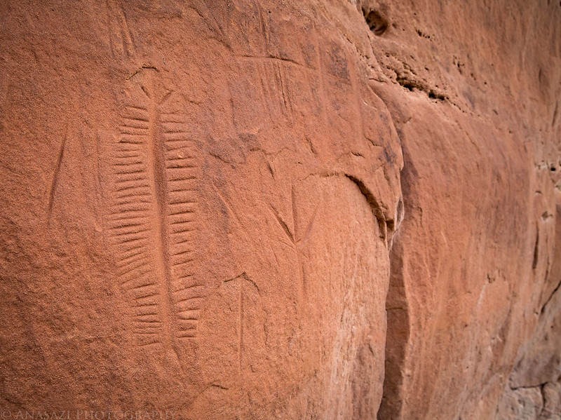 Incised Petroglyphs