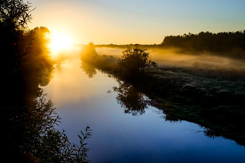 fujixe2 novascotia canada cans2s cornwallisriver river morning sun backlight backlit 2016 mist fog field water reflection