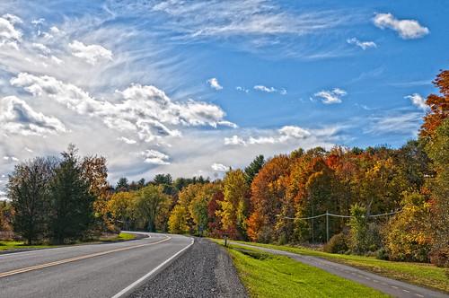 autumn trees colours 1000islands 1000islandsparkway roadtrip