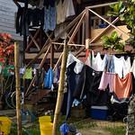 07 Viajefilos en Panama. Isla Bastimentos 07
