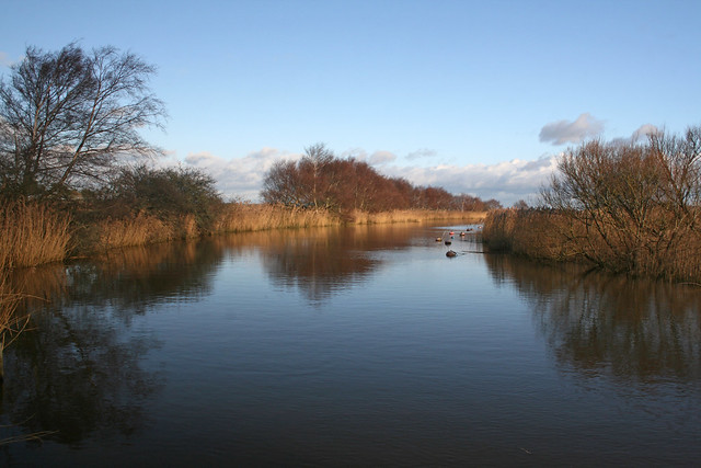 River Frome near Wareham
