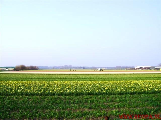 Lissen  Keukenhof 31-03-2007 30 km (4)