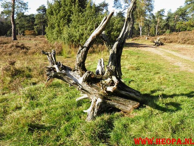 22-10-2011             Driebergen         26 km (120)