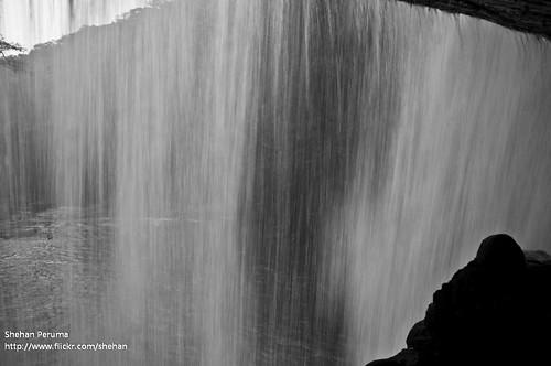 trees mountain nature water forest river waterfall nikon rocks sri lanka jungle srilanka ceylon flowing d90 shehan matale kunckles peruma seraella shehanperuma seraalla