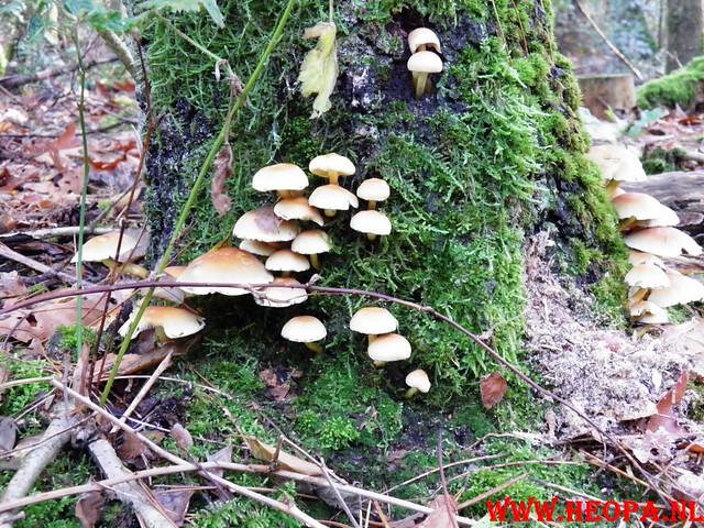 22-10-2011             Driebergen         26 km (54)