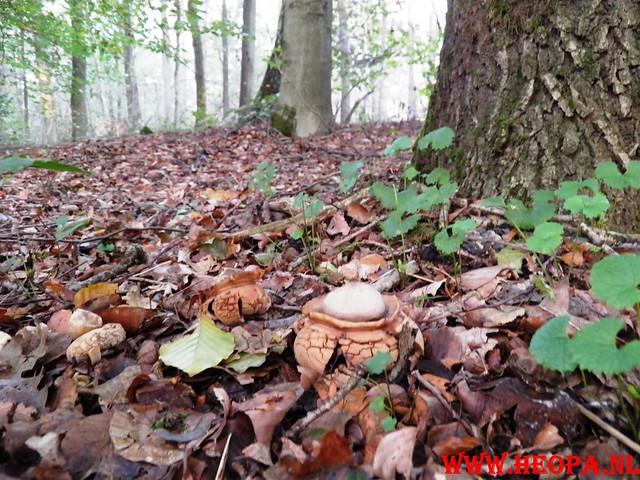 22-10-2011             Driebergen         26 km (9)