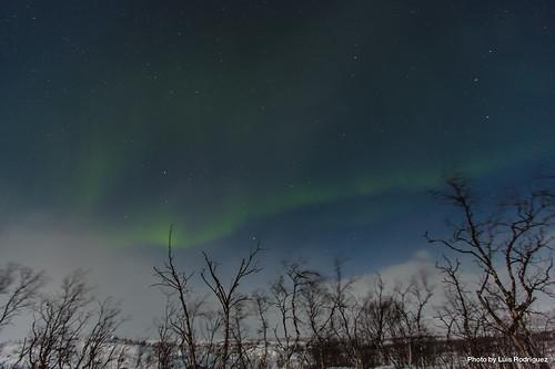 Auroras Boreales en Noruega-19   by luisete
