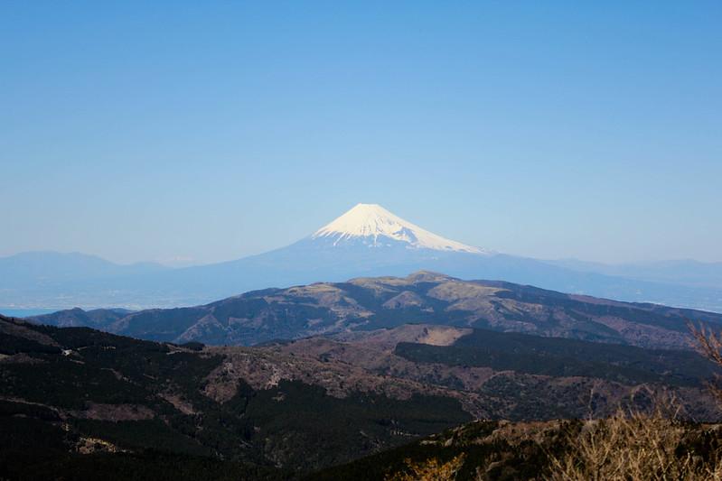 2014-03-31_00272_伊豆稜線トレイル.jpg