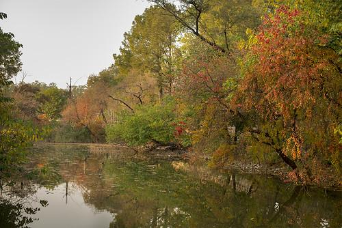 park pakistan lake fall colors view abdul islamabad 2014 qadir memon