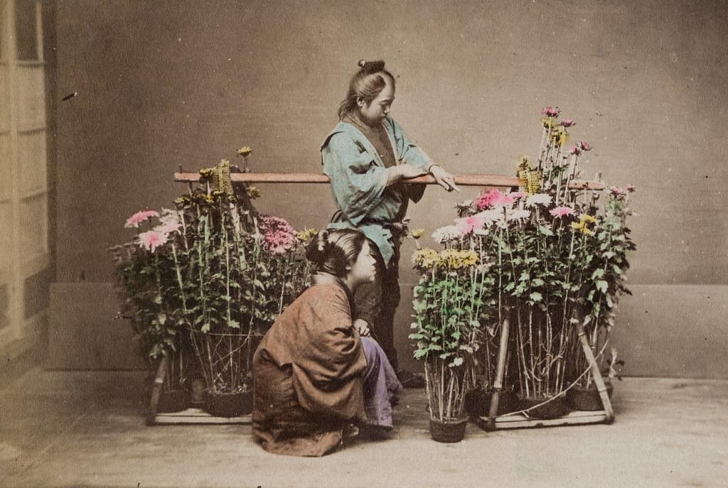 A Florist Hand Colored Albumen Print Japan Ref 2014 0