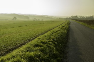 Misty fields of green | by Mark Dyer @ Island Picture Framing