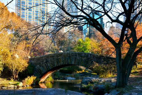 Central Park | by Crash Test Mike