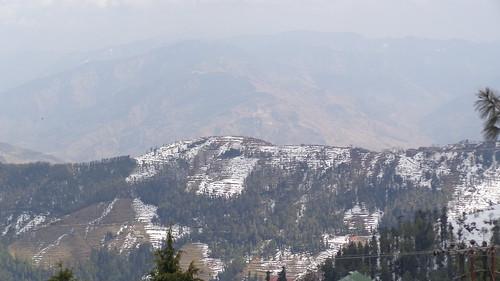 india asia himachalpradesh pradesh shimla kufri snow mountain mountains mountainsnow himachal hill hills