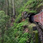13 Viajefilos en Sri Lanka. Tren a Ella 39