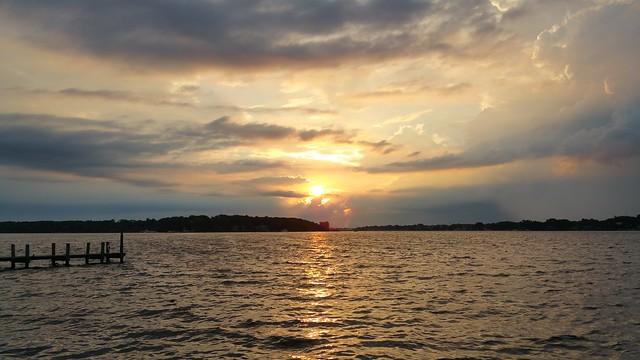 Marigold sunrise