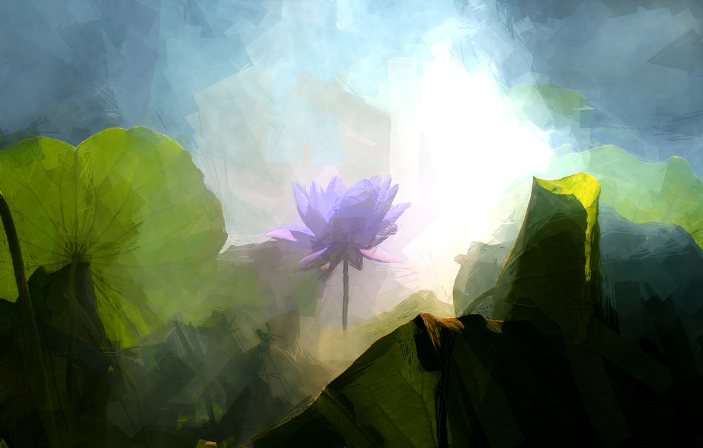 Lotus Flower Paintings Photographic Images Using Akvis O Flickr