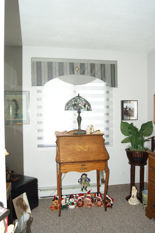 Valance and Concept Dual Shade