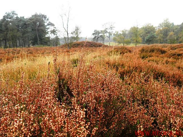 20-10-2012     Wedeblick-   Driebergen        25 Km (25)