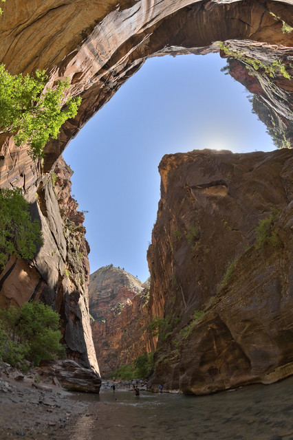 The Narrows, North Fork Virgin River, Zion National Park, Washington County, Utah 16