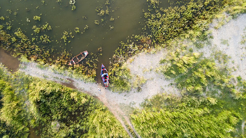 land landscape aritstic grass lake boats phantom4pro windy wind outdoors green sufined photography water people tree