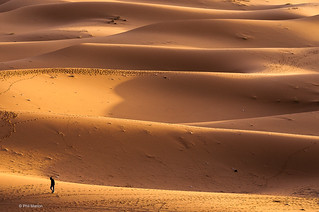 Lonely, dejected and depressed in the Sahara - Morocco | by Phil Marion (176 million views - THANKS)