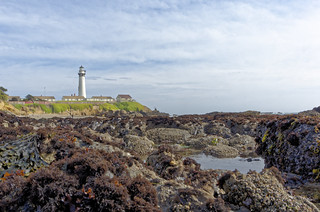 Pigeon Point Lighthouse | by Possum Inc.