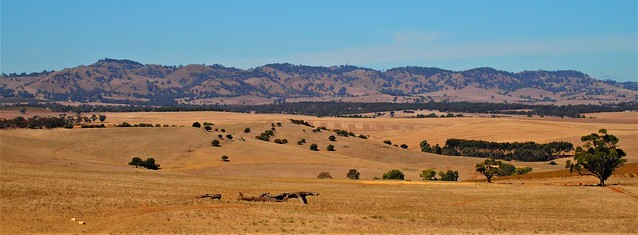 Barossa Ranges and Farmland from Pindarie, South Australia