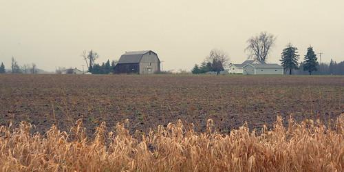 autumn fall colors rain weather nikon michigan fields roxand v2 stubble roxana 2014 farmyard eatoncounty 1v2 271365