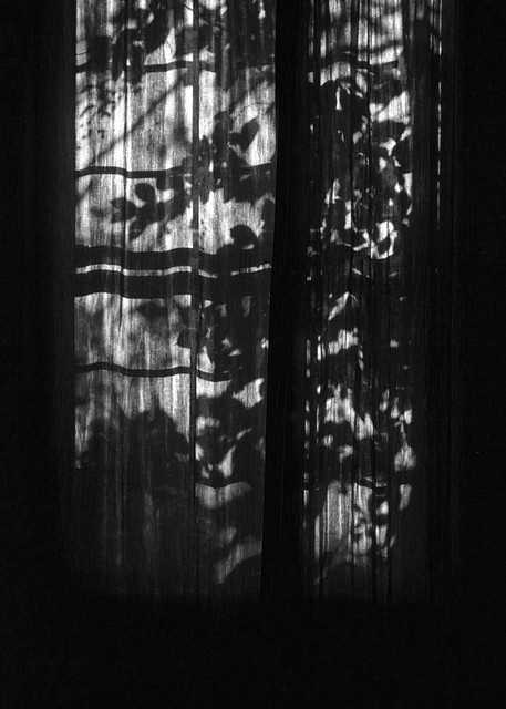Curtain Shadows B&W