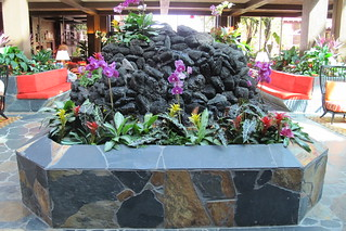 New water feature at The Poly | by The Tiki Chick