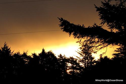 coffee rain sunrise surprise postrain surprized outmyfrontwindow needmorecoffee