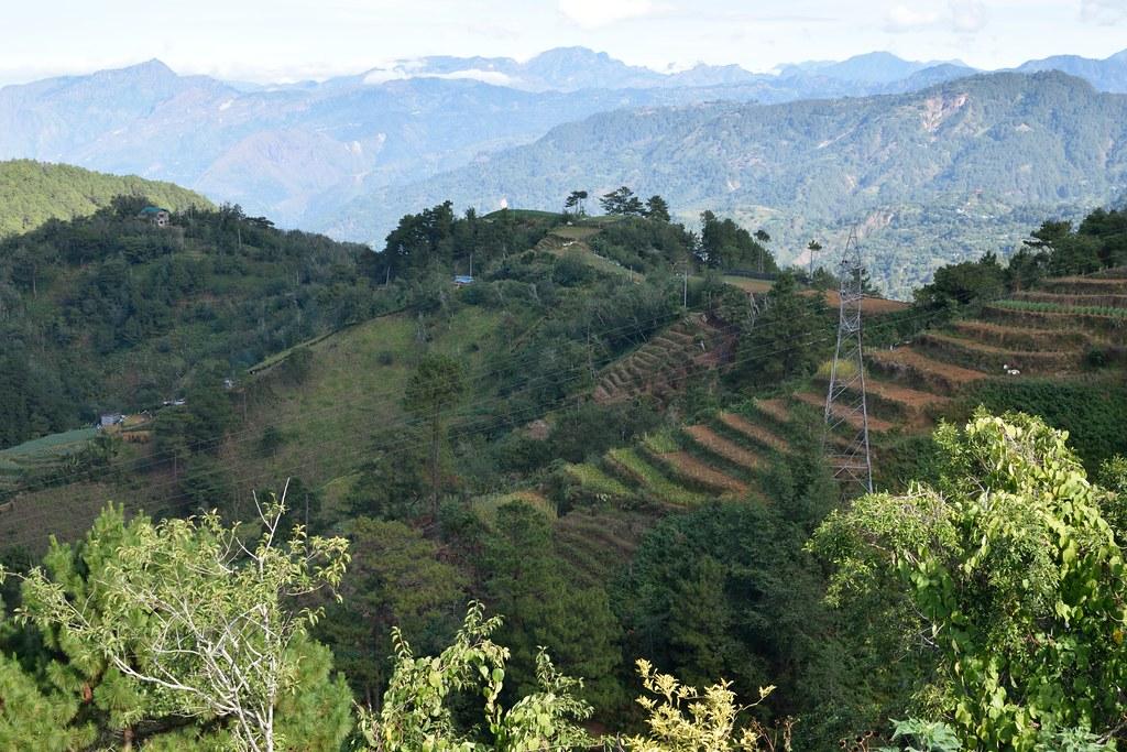 菲律賓班蓋特省(Benguet)