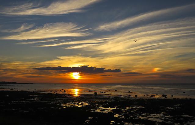 29 of 52 - Sunset Dream