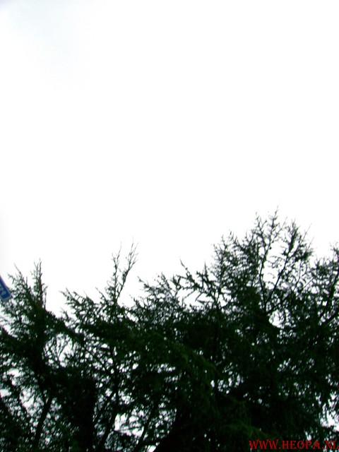 Ugchelen  22-03-2008 (55)