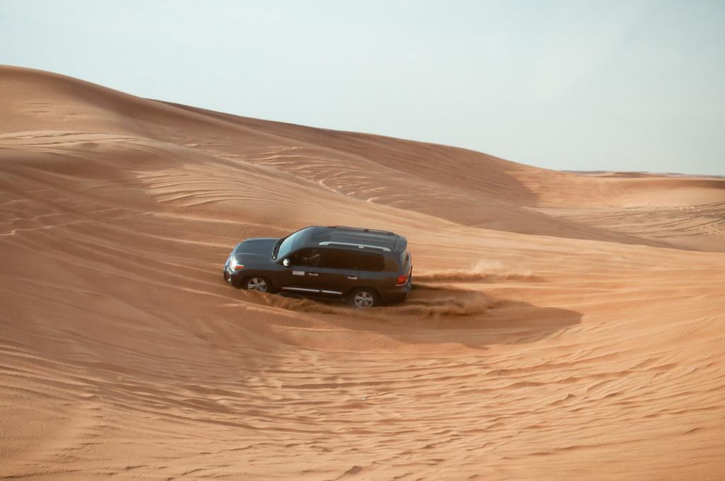 Desert Safari!