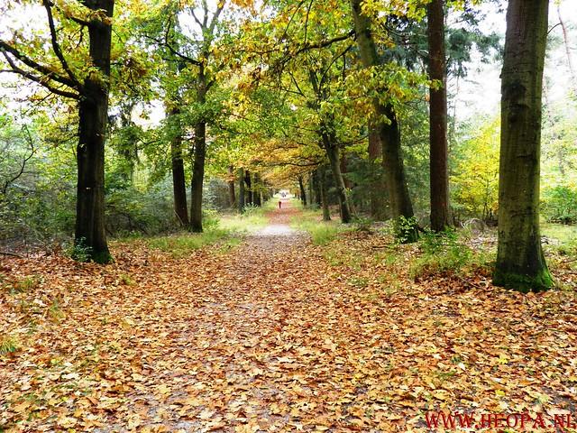 20-10-2012     Wedeblick-   Driebergen        25 Km (117)